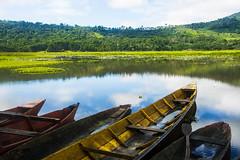 Laguna El Oconal - Villa Rica,  Perú (Peruvian Jungle) Tags: perú laguna el oconal pasco jungle oxapampa nature villa rica trees trip discovery selva tropical