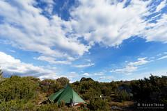 20170301-51-Camp (Roger T Wong) Tags: australia greatpinetier np nationalpark sel1635z sony1635 sonya7ii sonyalpha7ii sonyfe1635mmf4zaosscarlzeissvariotessart sonyilce7m2 tasmania wha wallsofjerusalem worldheritagearea bushwalk camp hike tent trektramp walk