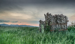 Leaf cartridge (stefanogrechi) Tags: landscape paesaggio natura nature sunset tramonto nuvole clouds lunga esposizione long exposition tree albero vento wind
