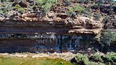 Kalbarri_Murchison River cliffs_Western Australia_0589