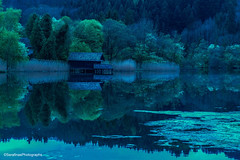 spring (Serafinas Photographs) Tags: see spiegelungen natur outdoor farn bäume grün blau wasser landschaft haus steg weg pflanzen