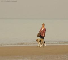 Belgian coast (Natali Antonovich) Tags: belgiancoast seasideresort seaside seashore seaboard sea northsea horizon landscape nature oostende walking walk dog animal water belgium belgie belgique lifestyle tradition