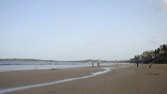 Versova Beach (zoeyfrancis) Tags: attraction destination beach fish travel enjoy mumbai versovabeach