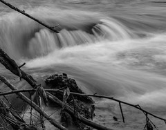 Naugatuck River After Some Much Needed Spring Rain (Skyelyte) Tags: river water nature peaceful newengland blackandwhite naugatuckct valley movement slowshutter wood sticks rock branches trees leaves monochrome spring rain endofdrought magma lava volcano old ancientstones ancientrocks porous connecticut rivervalley naugatuckvalley naugatuckriver power powersource longestriver connecticutslongestriver basalt igneousrock porousrock blackrocks shiny shinyrocks magmaticrock iceage