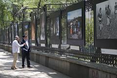 MX MM EXPOSICIÓN EL BANQUETE VISUAL (Secretaría de Cultura CDMX) Tags: chapultepec fotografías exposición maíz evm banquete deméxico cdmx méxico