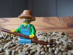 The Farmer in the Rye - HMM (captain_joe) Tags: sooc macromondays seed roggen toy spielzeug 365toyproject lego series15 minifigure minifig farmer