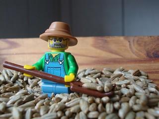 The Farmer in the Rye - HMM