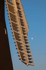 Holgate Windmill, April 2017 - 5