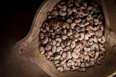IMG_5800 (MauricioPokemon) Tags: asaregionalpiauí brasil cisternacalçadão cisternas cáritas mauriciopokemon piauí recanto semiárido sãojoãodaserra