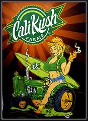RideIt (VegasBnR) Tags: nikon california sigma kushstock kushlife calikush socal poster 420 city sign challengegamewinner