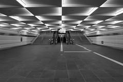 Stairway to the Randstad (davidvankeulen) Tags: zwolle overijssel europe europa entrypointrandstad entrypoint randstad thenetherlands holland nederstad hollandcity centralstation cs mainstation gare hauptbahnhof hbf stad city stadt ville trein train zug ns nederlandsespoorwegen prorail davidvankeulen davidvankeulennl davidcvankeulen urbandc