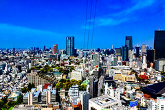View Roppongi from Tokyo Tower Observatory : 東京タワー大展望台より六本木方面の展望 (Dakiny) Tags: 2017 spring april japan tokyo minato minatoward park garden shibapark city street outdoor landscape horizon skyline building blue sky nikon d7000 sigma 1770mm f284 dc os hsm sigma1770mmf284dcmacrooshsm nikonclubit