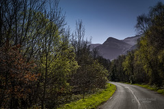 Road to Snowdonia (tbnate) Tags: llanberis wales snowdonia snowdonianationalpark nikon tbnate d750 nikond750 hill hills mountain mountains road vanishing vanishingpoint trees sky cloudlesssky nature outdoor outside bluesky landscape park tree