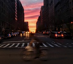 Sunset, silhouettes & bicyclist on 79th street NYC (dannydalypix) Tags: gothamist gotham nyc silhouettes sunset