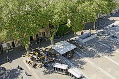 _DSC8806 (chris30300) Tags: palais des papes avignon
