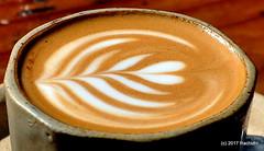 DSC_0977 (RachidH) Tags: cappuccino latte art cappuccinoart coffee themill divisadero sf sanfrancisco california ca rachidh greco