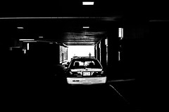 PoliceCPD (haominshi) Tags: street city blackandwhite bw chicago cpd police dystopian dystopia