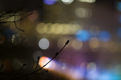 IMG_6197 (18250114) Tags: bokeh niagarafalls night longexposure