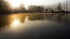 morninglight (Niek Goossen) Tags: morninglight ochtendlicht hulst 8steverkorting oudevaart zeeuwsvlaanderen zeeland netherlands