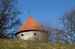 The tower of old town. (irio.jyske) Tags: roof house building tower wall trees townscape town tallin estonia sigma canon