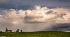Imminent . (AlbOst) Tags: clouds farmland cows cowshed imminent rain