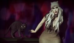 Meow! (Sadystika Sabretooth) Tags: lamb cat catwa blond blondes blog blogging blonde maitreya mutresse chicmoda n21 luxebox bishbox nanika delmay minimal epiphany
