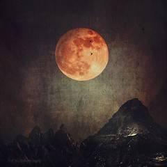 moon over dark mountains (Dyrk.Wyst) Tags: alpen alps berge himmel italien landschaft lanzada natur stimmung valmalenco atmosphere landscape mood mountains nature outdoors sky photoshelter darkness gebirgsmassiv dunkelheit hochgebirge mond moon rocks collage composing composition conceptual creativephotography dark dreamy experimental fantasy fineart konzeptionell manipulation malerisch mystical peaceful photoillustration photomanipulation square texture surreal vã¶gel birds