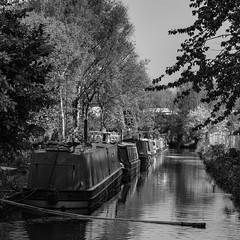 Narrowboats (garyjones1959) Tags: dudley england unitedkingdom leica leicasl monochrome bw blackandwhite blackcountry canal canals barge narrowboat waterways houseboat