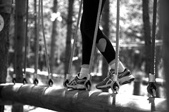 in the forest (delphine imbert) Tags: noir blanc monochrome lumiere nature loisirs foret sport accrobranche
