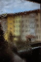 in the window (januwas) Tags: windows okno