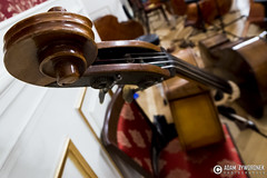 """adam zyworonek fotografia lubuskie zagan zielona gora • <a style=""""font-size:0.8em;"""" href=""""http://www.flickr.com/photos/146179823@N02/34294260036/"""" target=""""_blank"""">View on Flickr</a>"""