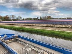 Keukenhof - The Netherlands (darrenboyj) Tags: boat fields nature lines water keukenhof holland netherlands pretty colours colors hdr sky spring