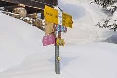 Hiking Sign (webeagle12) Tags: mountain snow mountains alps switzerland europe swiss valley berne wengen bernese berneseoberland oberland murren susse hikingsign nikond90 1685mm