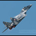 Polish Mig-29 Display