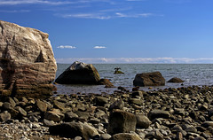 Rocky beach & cormorant (Bob Gundersen) Tags: ocean statepark park blue sea usa brown beach water birds animal rock stone landscape outside coast photo seaside interesting sand nikon flickr day waterfront image shots outdoor hiking connecticut sandy shoreline picture newengland ct places explore madison shore cormorant scenes animalplanet hammonassett gundersen longislandsound conn rockformation hammo nikoncamera d600 lisound hammonasset meigspoint hammonassetbeachstatepark birdtrips hammonassetbeach nikond600 connecticutscenes bobgundersen robertgundersen pwpartlycloudy