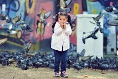 Through Pigeons (NATIONAL SUGRAPHIC) Tags: street kids children pigeons istanbul sokak zeytinburnu gvercinler ouklar sugraphic
