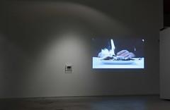 Synthesis (vista de la instalacion Centro de arte Lopati, 2012)