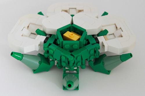 White Rose cutaway