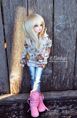 Chilly afternoon (Eludys) Tags: doll chloe bjd fairyland mnf minifee rheia eludys