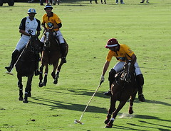 117th Hurlingham Club Open Championship, Argentina / 117° Abierto de Hurlingham YPF (Σταύρος) Tags: vacation horse holiday latinamerica southamerica argentina argentine leather cheval nikon pony 70300mm polo rtw pferd vacanze tack hest roundtheworld paard sudamerica triplecrown 馬 polopony américadosul américalatina globetrotter southernhemisphere zonasul amériquelatine polomatch лошадь poloclub argentinien 16days 阿根廷 hurlingham equidae onhorseback américadelsur südamerika hurlinghamclub leatherboots worldtraveler άλογο ariannin 南美洲 repúblicaargentina littleeurope laaguada アルゼンチン americadelsud chukkas argentinerepublic 皮革 argentinidad pologame poloteam ladolfina الأرجنتين 아르헨티나 d700 zonaa nikond700 chukkers abiertodehurlingham αργεντινή triplecorona 117thhurlinghamopen hurlinghamopen capitaloftango аргенти́на chukers tradiciondelpoloargentino