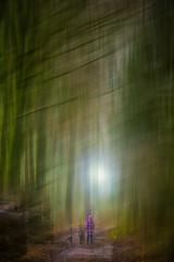 Mädchen mit 2 Hunden im dunklen Wald!!! (radonracer) Tags: wood forest motionblur digiart wald radonart