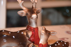 Family Deer (MissLilieDolly) Tags: santa christmas family famille light tree ball de bright suspension decoration garland deer collection figure fir hanging characters claus dolly figurine nol miss lilie dcoration guirlande sapin boule pre personnage biche lumineuse missliliedolly