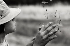 Wish You Were Here (John. Blakey) Tags: family boy white black missing child you here dandelion nephew wishes were wish wishing 500px ifttt wish500px