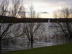 light is fading (SheilaJ_P) Tags: trees winter lake water reflections landscape boats nikon flooding miltonkeynes dusk ripples 2014 nikoncoolpix caldecottelake january2014