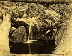history dogs water clothing women rocks waterfalls ferns mountvictoria albumen photoprint fairydellfalls