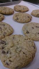 choc rice crispy cookies j