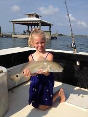 Awe, isn't she adorable! (saltydogfishingcharters) Tags: