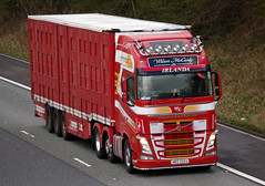 Wilson McCurdy Livestock Transport, Volvo FH 540 Globetrotter HRZ2323 (andyflyer) Tags: truck trucks globetrotter haulage hgv roadtransport volvofh roadhaulage fh540 wilsonmccurdy hrz2323 mccurdylivestocktransport fhglobetrotter