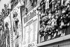 Wall of Dolls (Jo March11) Tags: milán milano italia pamelapalenciano nosóloduelenlosgolpes ieletxigerra idoiaeletxigerra eletxigerra canon canoneos