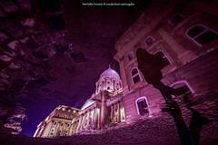 walk to the castle (xergophoto) Tags: walk castle nikon d610 samyang 14mm fisheye night budapest magyarország séta hölgy nő kék tócsa macskakő mirror